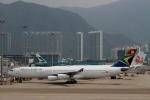 ハピネスさんが、香港国際空港で撮影した南アフリカ航空 A340-313Xの航空フォト(写真)
