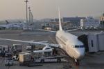 とっちさんが、羽田空港で撮影した日本航空 737-846の航空フォト(写真)