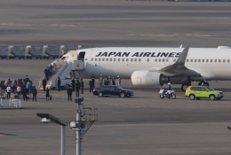 mahiちゃんさんが、羽田空港で撮影した日本航空 737-846の航空フォト(写真)