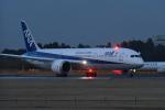 なないろさんが、成田国際空港で撮影した全日空 787-9の航空フォト(写真)