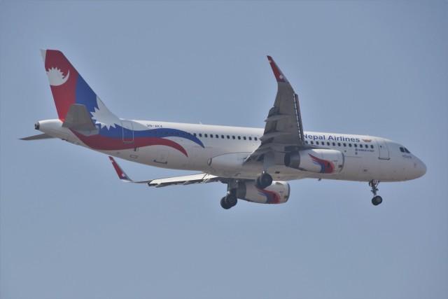 masa707さんが、インディラ・ガンディー国際空港で撮影したネパール航空 A320-233の航空フォト(飛行機 写真・画像)