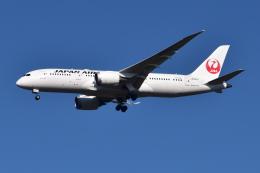 Timothy✈︎NRTさんが、成田国際空港で撮影した日本航空 787-8 Dreamlinerの航空フォト(写真)