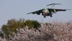 NGTさんが、入間飛行場で撮影した航空自衛隊 C-1の航空フォト(写真)