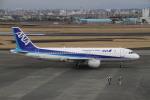 珈琲牛乳さんが、宮崎空港で撮影した全日空 A320-211の航空フォト(写真)