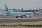 @Yuuさんが、成田国際空港で撮影した大韓航空 737-8Q8の航空フォト(写真)