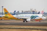 セブンさんが、成田国際空港で撮影したセブパシフィック航空 A320-214の航空フォト(飛行機 写真・画像)