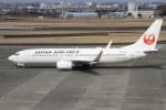 珈琲牛乳さんが、宮崎空港で撮影した日本航空 737-846の航空フォト(写真)