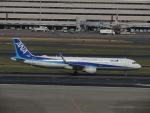 さゆりんごさんが、羽田空港で撮影した全日空 A321-211の航空フォト(写真)