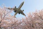 かぷちーのさんが、伊丹空港で撮影した全日空 777-281/ERの航空フォト(写真)