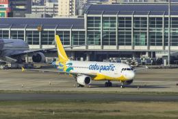 アローズさんが、福岡空港で撮影したセブパシフィック航空 A320-214の航空フォト(飛行機 写真・画像)