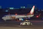 JA882Aさんが、松山空港で撮影したティーウェイ航空 737-8HXの航空フォト(写真)