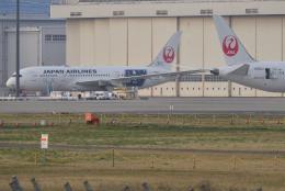 sepia2016さんが、成田国際空港で撮影した日本航空 787-8 Dreamlinerの航空フォト(写真)