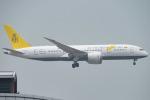 しぃさんが、香港国際空港で撮影したロイヤルブルネイ航空 787-8 Dreamlinerの航空フォト(写真)