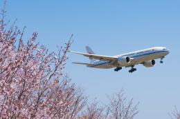 しぃさんが、成田国際空港で撮影した中国国際貨運航空 777-FFTの航空フォト(飛行機 写真・画像)
