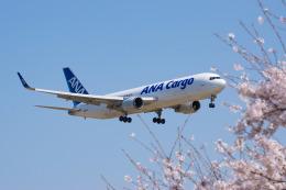 しぃさんが、成田国際空港で撮影した全日空 767-316F/ERの航空フォト(飛行機 写真・画像)