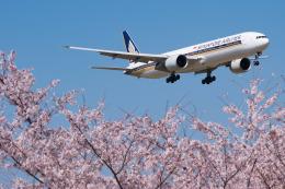 しぃさんが、成田国際空港で撮影したシンガポール航空 777-312/ERの航空フォト(飛行機 写真・画像)