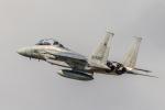 TOM310さんが、新田原基地で撮影した航空自衛隊 F-15DJ Eagleの航空フォト(写真)