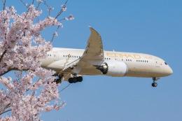 しぃさんが、成田国際空港で撮影したエティハド航空 787-9の航空フォト(飛行機 写真・画像)