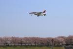 オポッサムさんが、入間飛行場で撮影した航空自衛隊 T-4の航空フォト(写真)