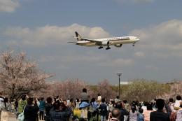 ☆ライダーさんが、成田国際空港で撮影したシンガポール航空 777-312/ERの航空フォト(飛行機 写真・画像)