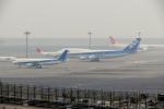 kooo_taさんが、羽田空港で撮影したシティリンク A320-214の航空フォト(写真)
