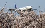 take_2014さんが、成田国際空港で撮影したユナイテッド航空 777-222/ERの航空フォト(写真)