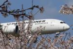 take_2014さんが、成田国際空港で撮影した日本航空 787-8 Dreamlinerの航空フォト(写真)