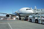 ktaroさんが、新千歳空港で撮影した全日空 777-281/ERの航空フォト(写真)