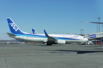 ktaroさんが、新千歳空港で撮影した全日空 737-881の航空フォト(写真)