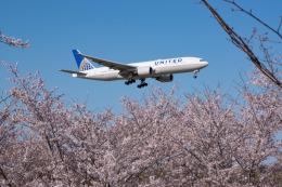 しぃさんが、成田国際空港で撮影したユナイテッド航空 777-222/ERの航空フォト(飛行機 写真・画像)