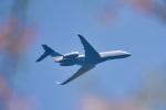 パンダさんが、成田国際空港で撮影したバンク・オブ・アメリカ EMB-135BJ Legacy 600の航空フォト(飛行機 写真・画像)