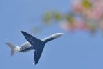 パンダさんが、成田国際空港で撮影した不明 G500/G550 (G-V)の航空フォト(飛行機 写真・画像)
