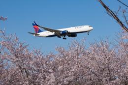 しぃさんが、成田国際空港で撮影したデルタ航空 767-3P6/ERの航空フォト(飛行機 写真・画像)