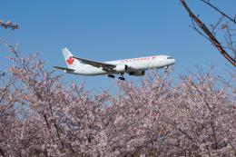 しぃさんが、成田国際空港で撮影したエア・カナダ 767-375/ERの航空フォト(飛行機 写真・画像)