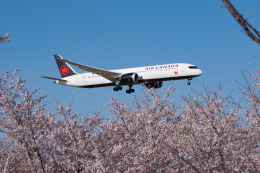 しぃさんが、成田国際空港で撮影したエア・カナダ 787-9の航空フォト(飛行機 写真・画像)