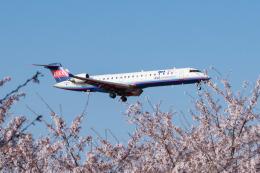 しぃさんが、成田国際空港で撮影したアイベックスエアラインズ CL-600-2C10(CRJ-702ER)の航空フォト(飛行機 写真・画像)