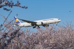 しぃさんが、成田国際空港で撮影したルフトハンザ・カーゴ 777-FBTの航空フォト(飛行機 写真・画像)