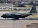 FT51ANさんが、名古屋飛行場で撮影した航空自衛隊 C-130H Herculesの航空フォト(写真)