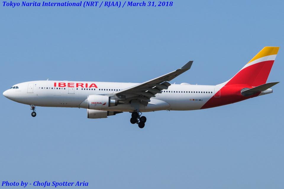 Chofu Spotter Ariaさんのイベリア航空 Airbus A330-200 (EC-MKJ) 航空フォト