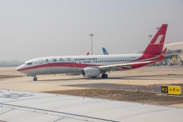 xingyeさんが、鄭州新鄭国際空港で撮影した上海航空 737-8Q8の航空フォト(飛行機 写真・画像)