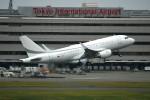 シュウさんが、羽田空港で撮影したK5アヴィエーション A319-115CJの航空フォト(写真)