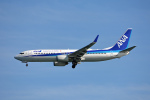 ktaroさんが、羽田空港で撮影した全日空 737-881の航空フォト(写真)