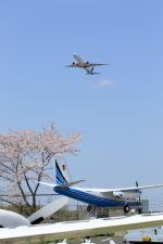 多楽さんが、成田国際空港で撮影したガルーダ・インドネシア航空 777-3U3/ERの航空フォト(写真)