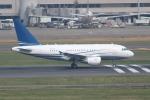 OMAさんが、羽田空港で撮影したアヴィコン・ジェット・マルタ A318-112 CJ Eliteの航空フォト(飛行機 写真・画像)