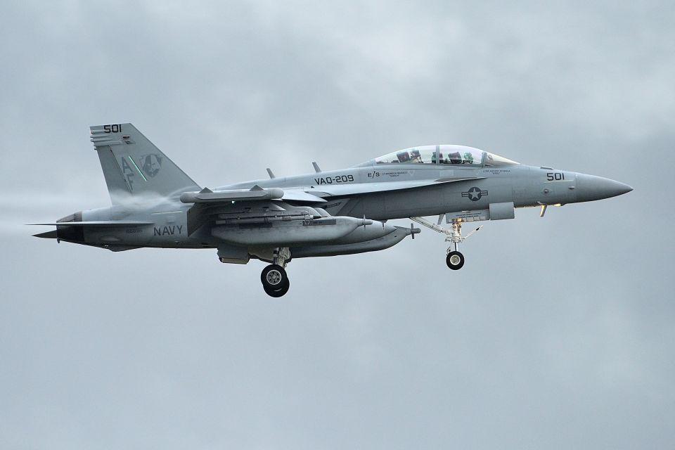 うめやしきさんのアメリカ海軍 Boeing F/A-18 (166896) 航空フォト