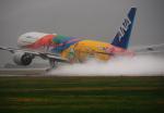 サボリーマンさんが、松山空港で撮影した全日空 777-281/ERの航空フォト(飛行機 写真・画像)