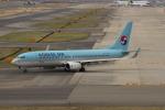 uhfxさんが、関西国際空港で撮影した大韓航空 737-8SHの航空フォト(写真)