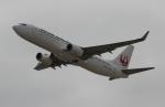 uhfxさんが、関西国際空港で撮影した日本航空 737-846の航空フォト(飛行機 写真・画像)