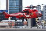 はるかのパパさんが、ハーディーバラックスヘリポートで撮影した東京消防庁航空隊 EC225LP Super Puma Mk2+の航空フォト(写真)