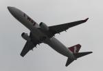 uhfxさんが、関西国際空港で撮影したティーウェイ航空 737-8ALの航空フォト(飛行機 写真・画像)